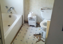 03_09-1 1before bath.jpg