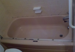 2013-03-11 before tub.jpg